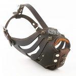 brown basket dog muzzle