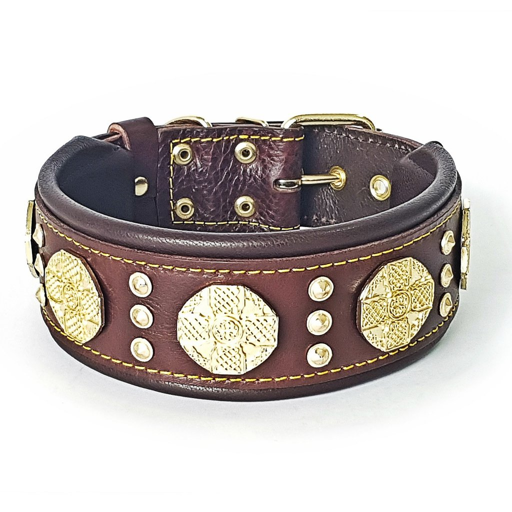brown_dog_collar