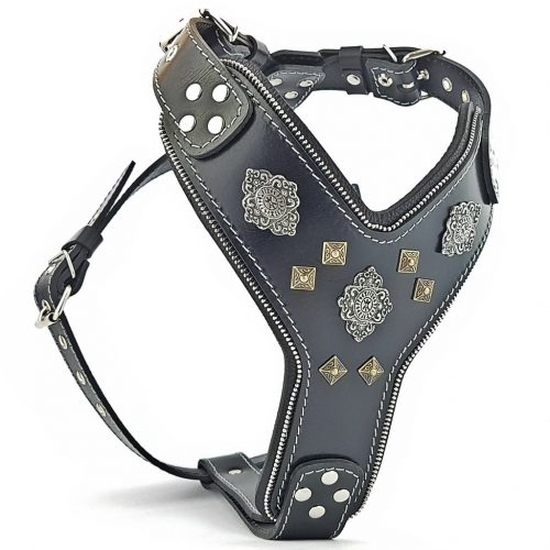 Custom All Black big dog leather harness