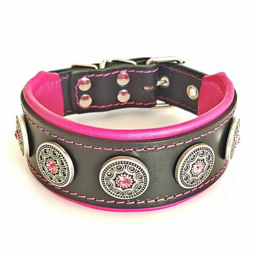 custom_dog_collar_pink