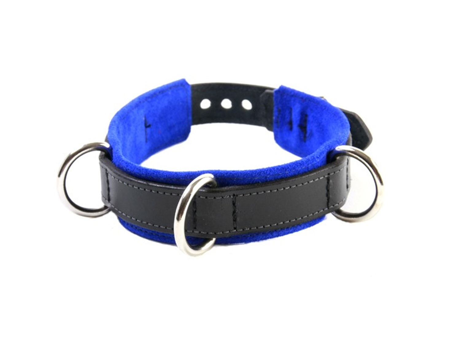 restrictive training bondage collar blue