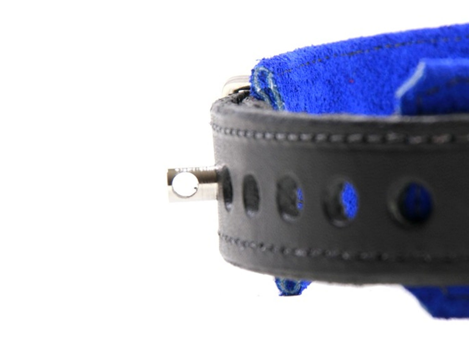 restrictive training bondage collar blue 3