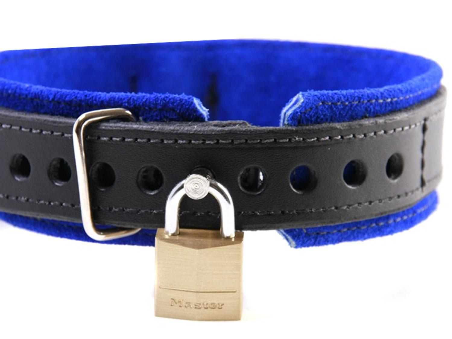 restrictive training bondage collar blue 4