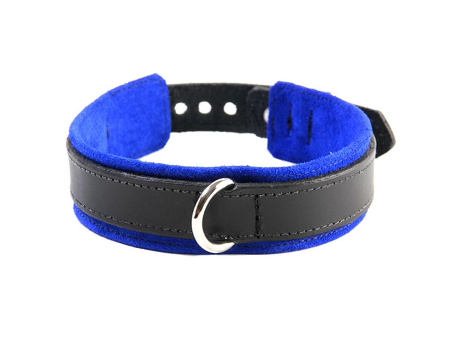 submissive training collar blue